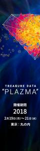 plazma_160_600_no_button